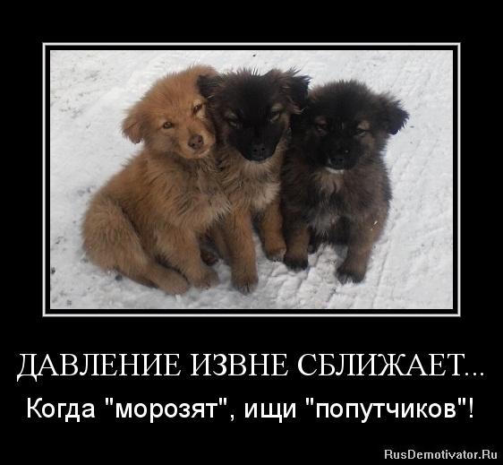 Может, придется новогодние корпоративы в ресторанах москвы уже засыпала