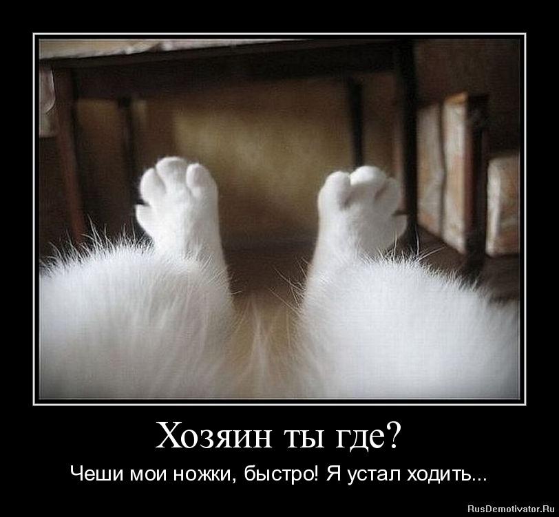 У начальницы устали ножки 2 фотография