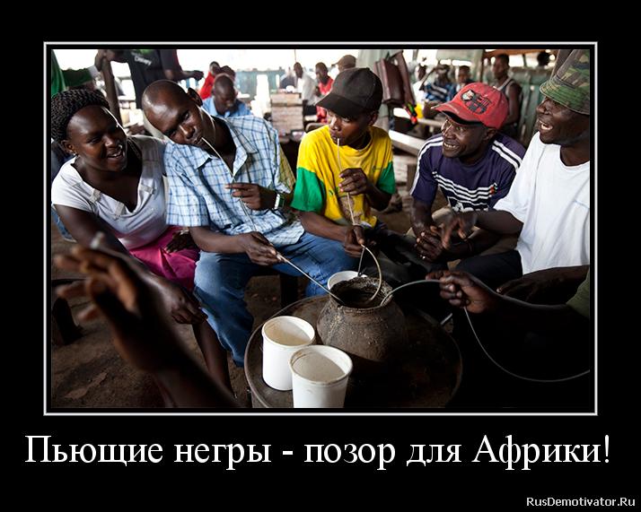 Пьющие негры - позор для Африки!