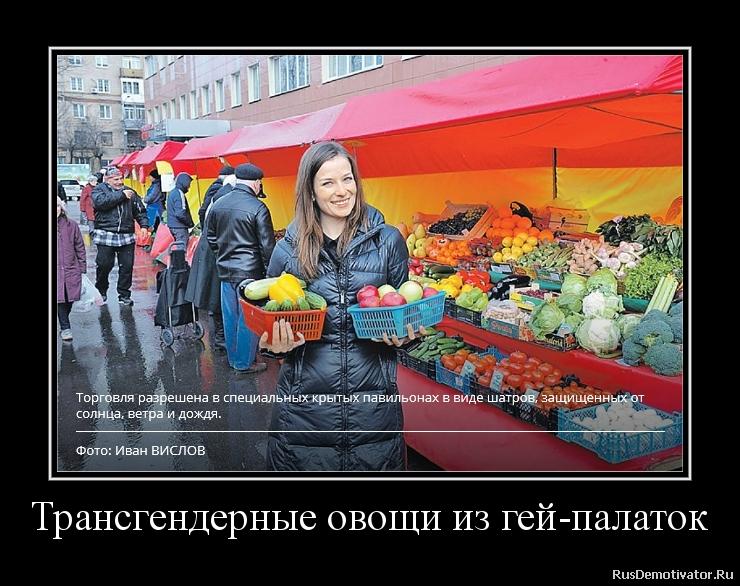 Трансгендерные овощи из гей-палаток