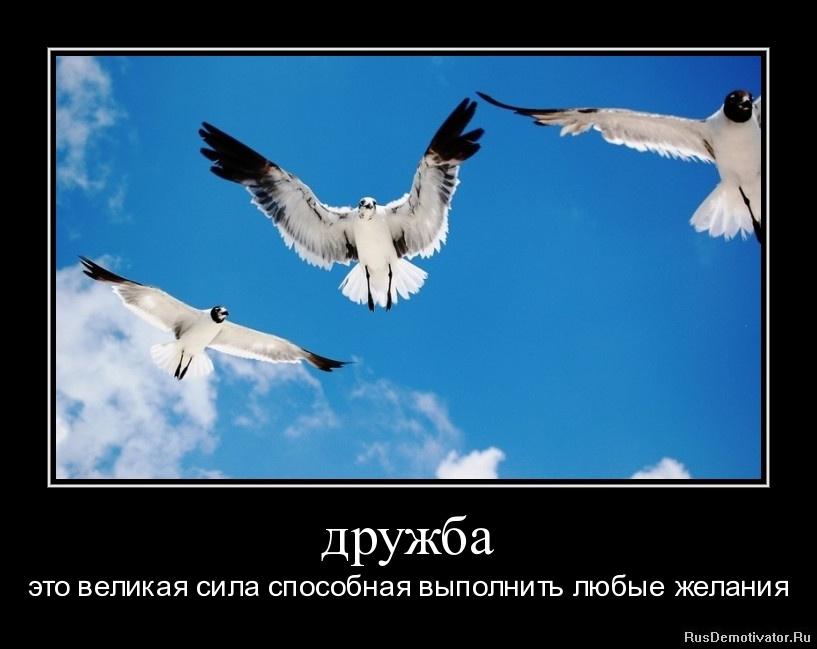 дружба - это великая сила способная выполнить любые желания