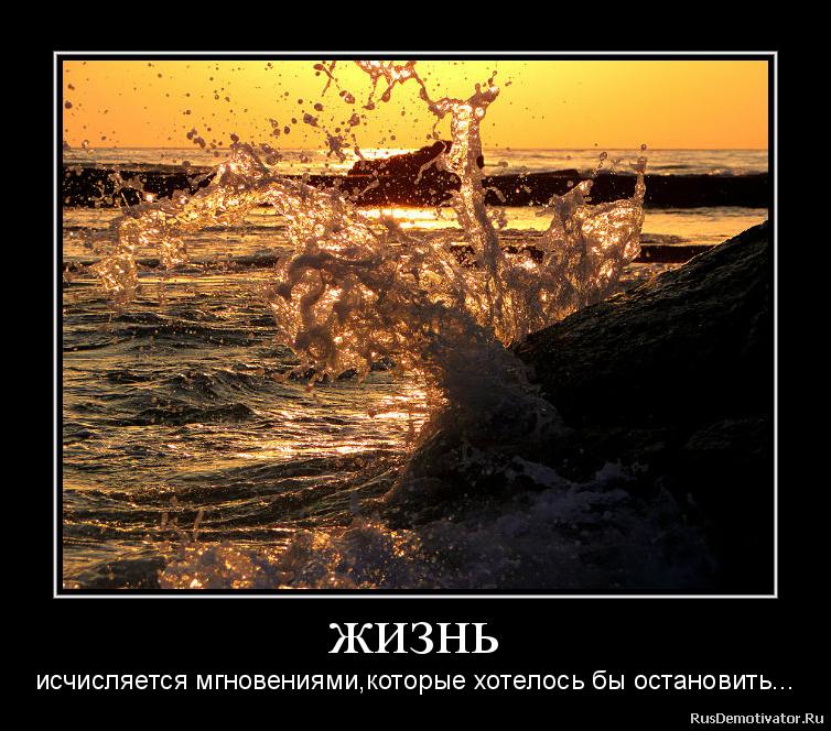 жизнь - исчисляется мгновениями, которые хотелось бы остановить...