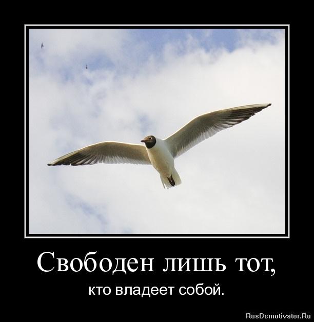 Свободен лишь тот, - кто владеет собой.