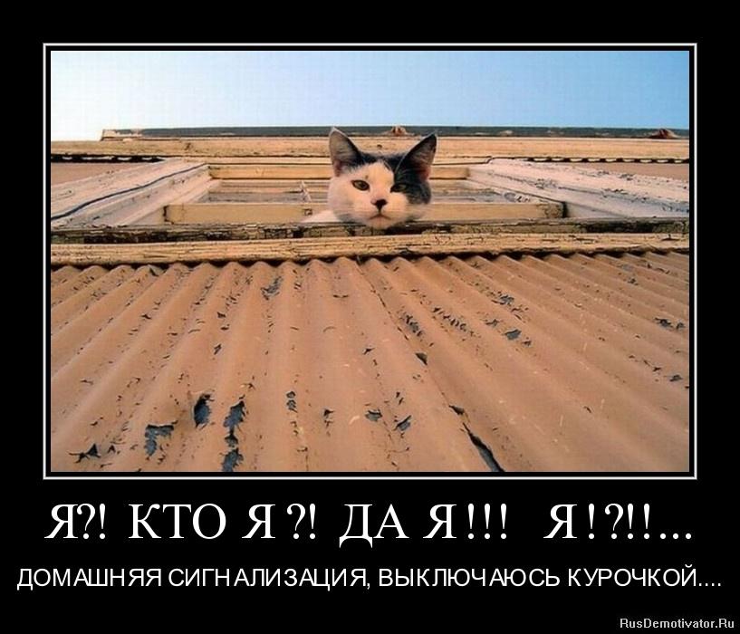 Я?! КТО Я ?! ДА Я !!! Я !?!!... - ДОМАШНЯЯ СИГНАЛИЗАЦИЯ, ВЫКЛЮЧАЮСЬ КУРОЧКОЙ....