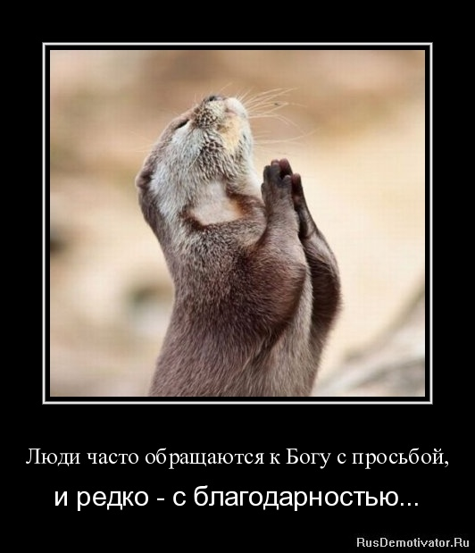 Люди часто обращаются к Богу с просьбой, - и редко - с благодарностью...