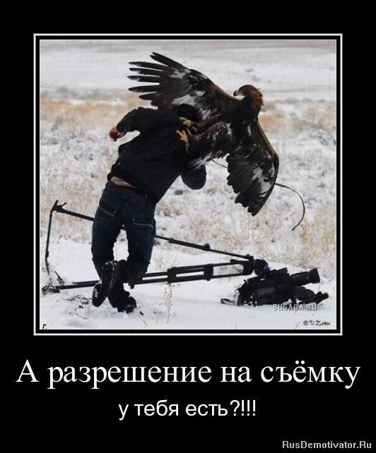 Эрофото полины глущенко с новошахтинска сообщать мне