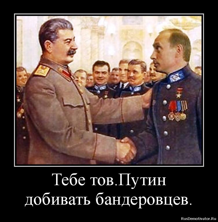 Тебе тов.Путин добивать бандеровцев.