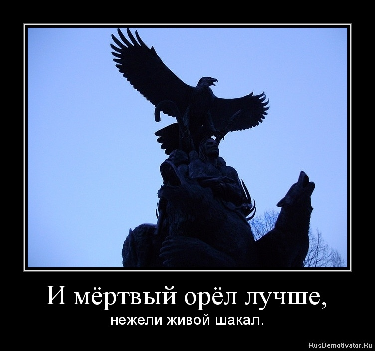 лети как орел цитаты