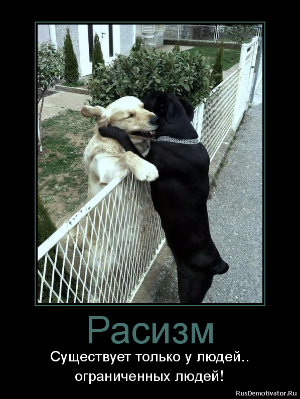 Расизм - Существует только у людей.. ограниченных людей!