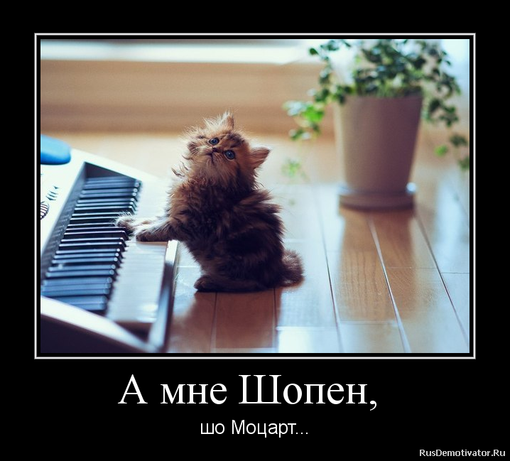 А мне Шопен, - шо Моцарт...