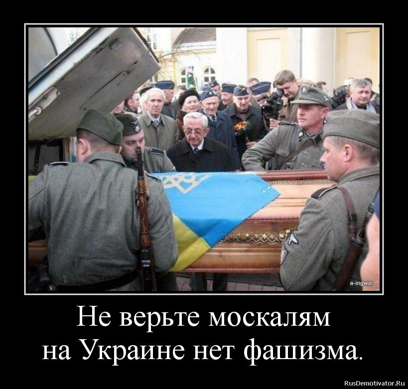 Не верьте москалям на Украине нет фашизма.