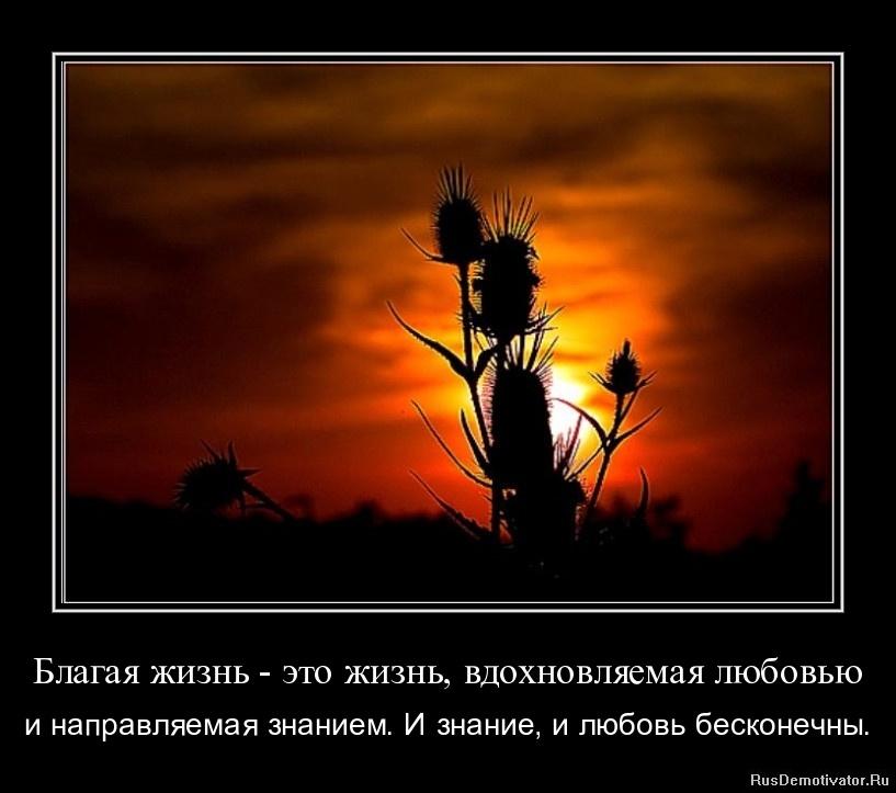 Благая жизнь - это жизнь, вдохновляемая любовью - и направляемая знанием. И знание, и любовь бесконечны.