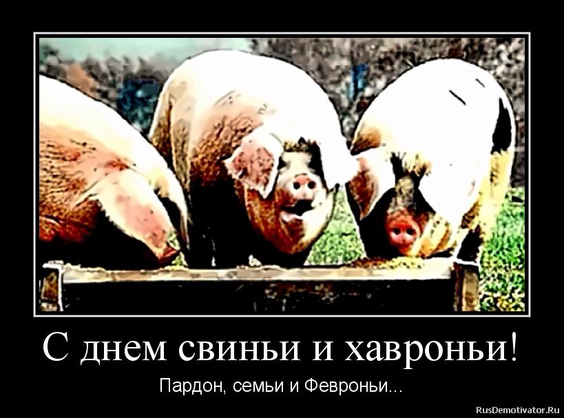 С днем свиньи и хавроньи! - Пардон, семьи и Февроньи...