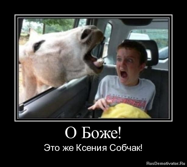 О Боже! - Это же Ксения Собчак! » Демотиваторы по-русски - Создать ...