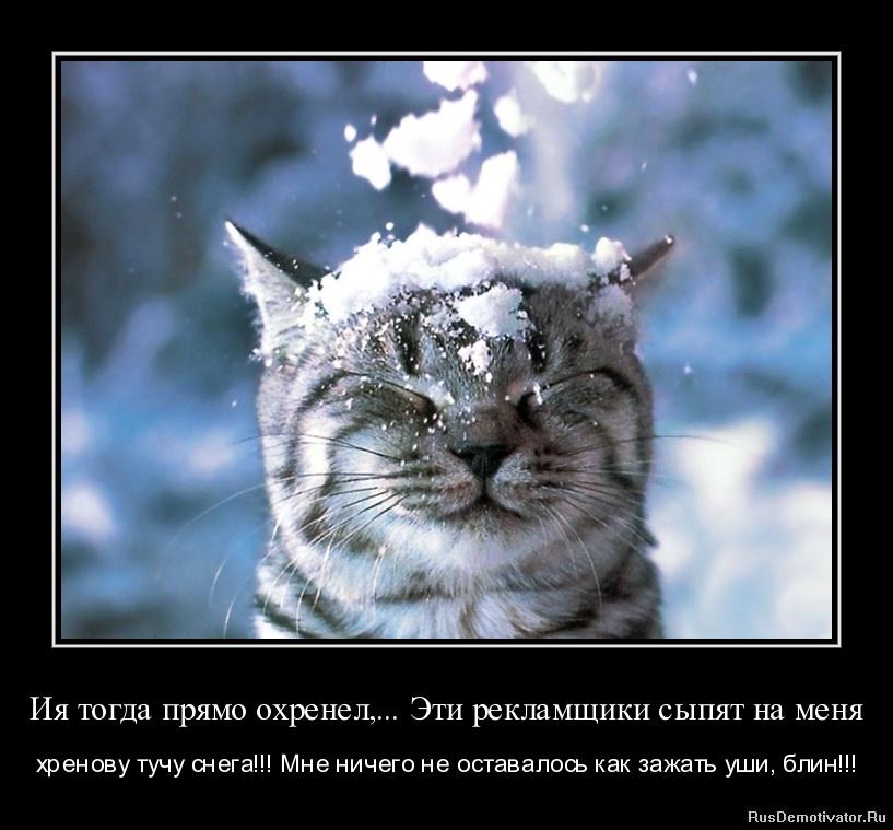 Ия тогда прямо охренел,... Эти рекламщики сыпят на меня - хренову тучу снега!!! Мне ничего не оставалось как зажать уши, блин!!!