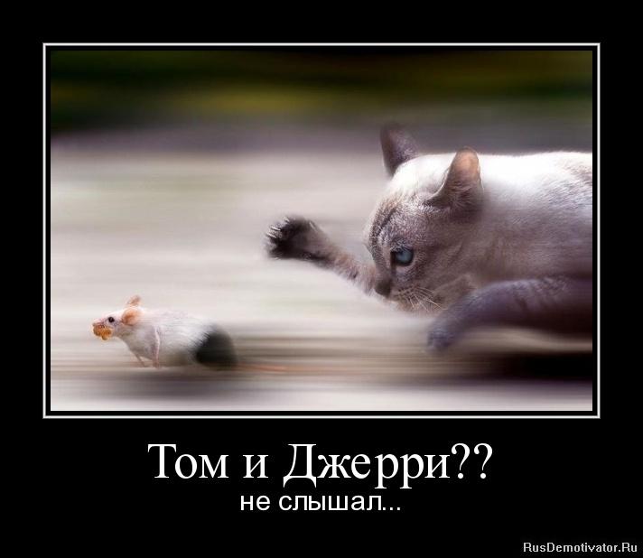 Том и Джерри?? - не слышал...