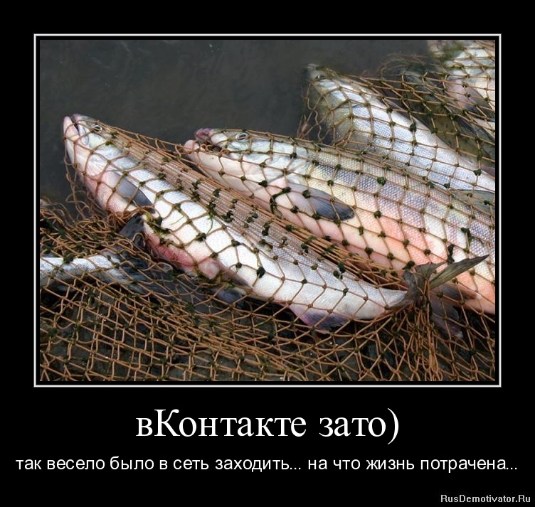 вКонтакте зато) - так весело было в сеть заходить... на что жизнь потрачена...