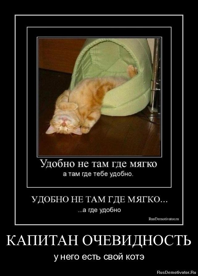 КАПИТАН ОЧЕВИДНОСТЬ - у него есть свой котэ