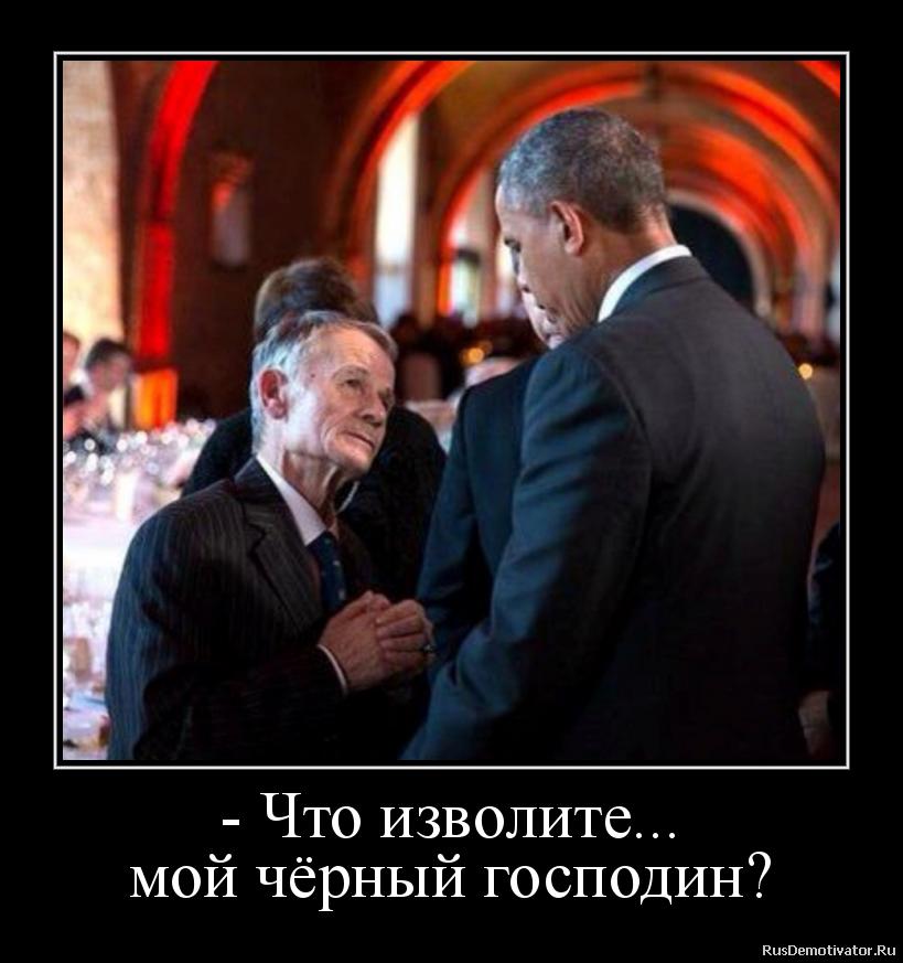 - Что изволите... мой чёрный господин?