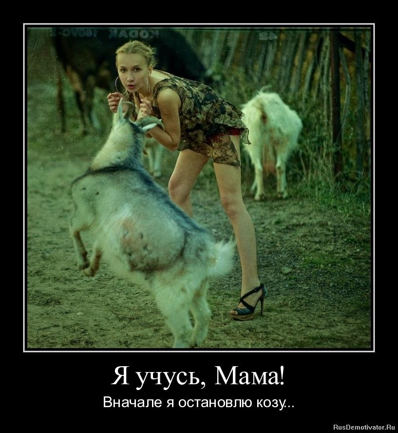Я учусь, Мама! - Вначале я остановлю козу...