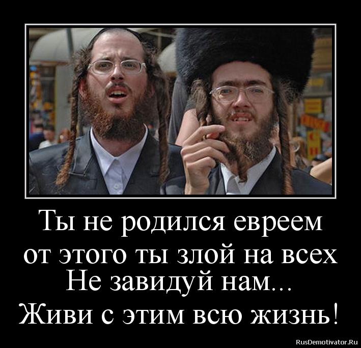 Ты не родился евреем от этого ты злой на всех Не завидуй нам... Живи с этим всю жизнь!