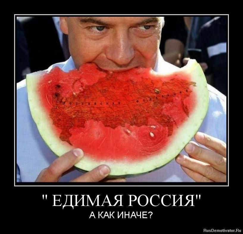 Лучшие демотиваторы → едимая россия