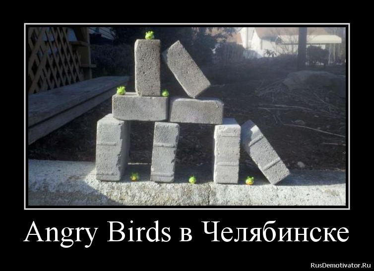 Angry Birds в Челябинске