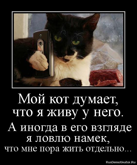 Как не быть пошлым Тимофеевич, Василий Наумов