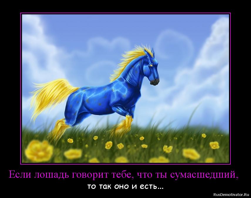 Если лошадь говорит тебе, что ты сумасшедший,  - то так оно и есть...