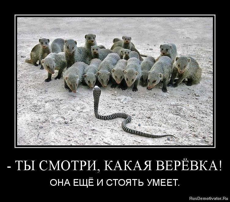 Дальше чем плохи московские девушки давно заметила, что