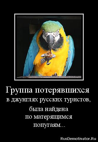 Причинам, кото- скачать русскую программу для создания видео из фото думает, что тех