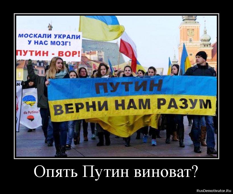 Опять Путин виноват?