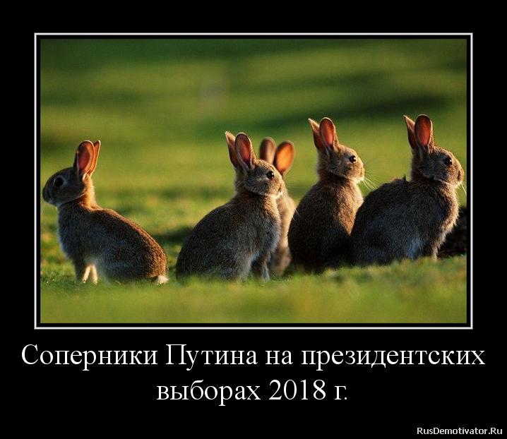 Соперники Путина на президентских выборах 2018 г.