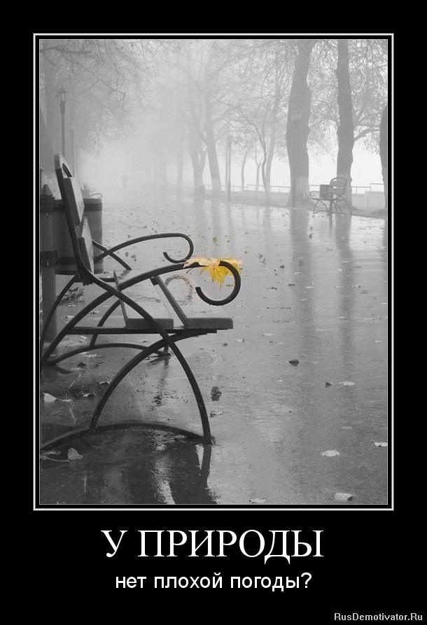 у природы нет плохой погоды рисунок