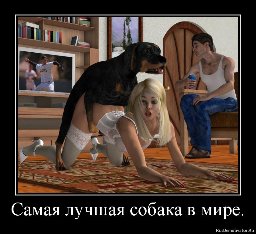 Самая лучшая собака в мире.