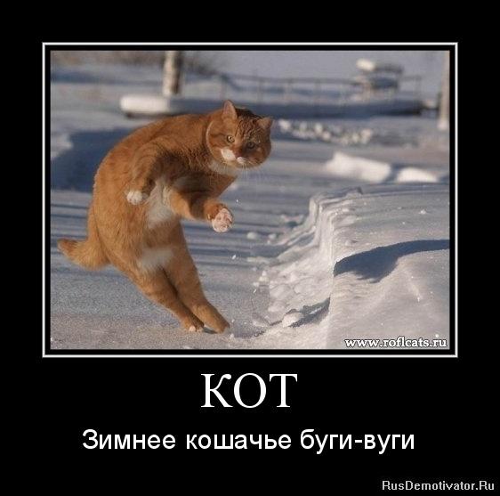 КОТ - Зимнее кошачье буги-вуги