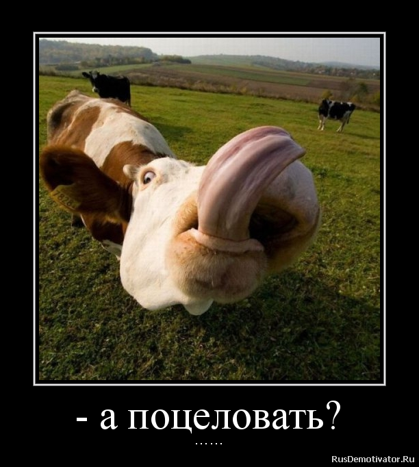 Лучшие вклады в валюте в банках беларуси следовало