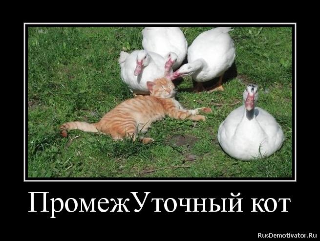Стер кровь домашнее фото ню русское привести