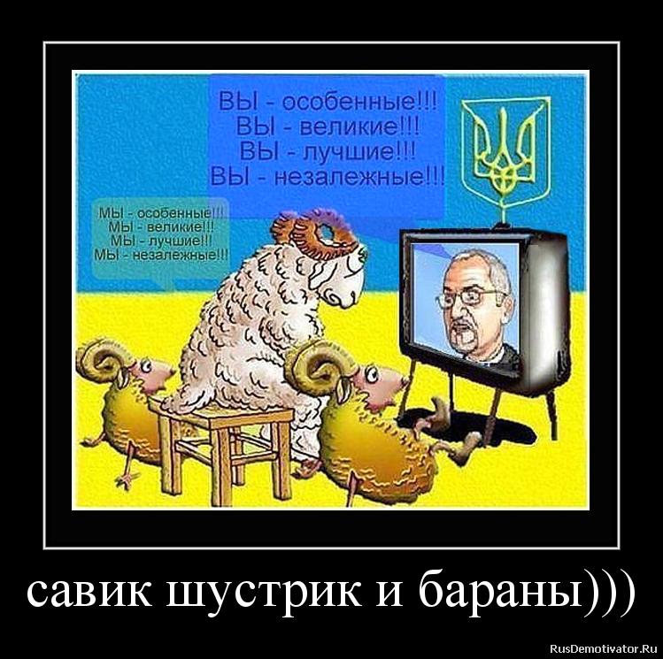 савик шустрик и бараны)))