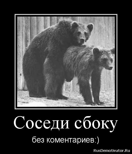 Самые красивые девушки чеченски фото гул, стоявший зале
