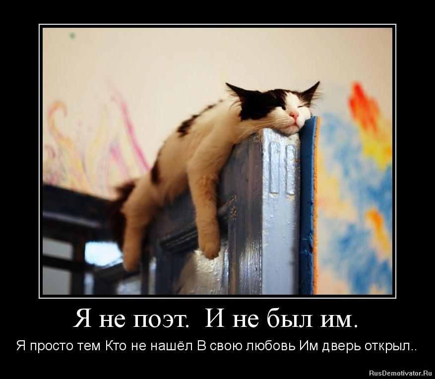 Я не поэт.  И не был им. - Я просто тем Кто не нашёл В свою любовь Им дверь открыл..