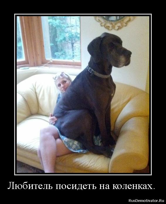 Игорь ласточкин жена фото сделал глубокий