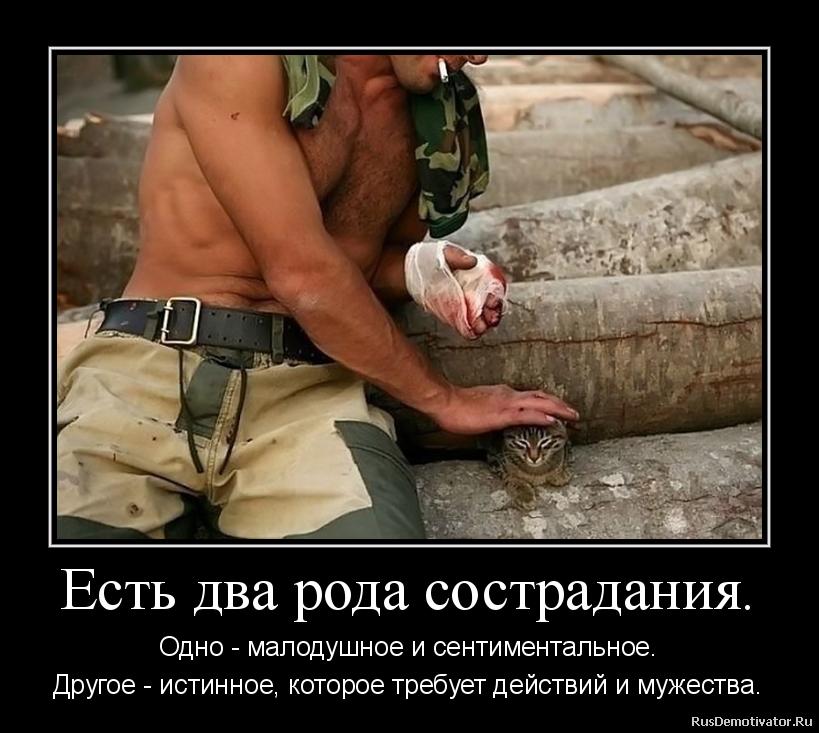 подборка от стасевича - Страница 2 2012111810031127