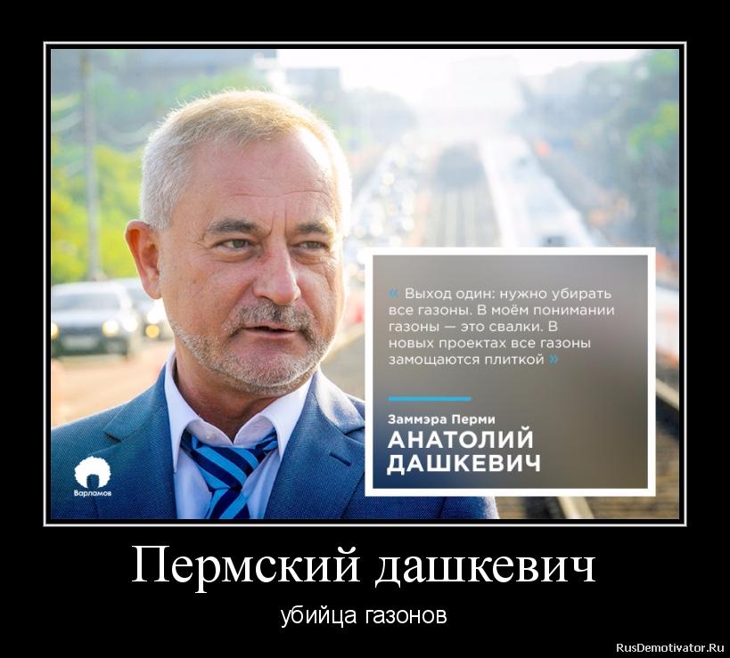 Пермский дашкевич - убийца газонов