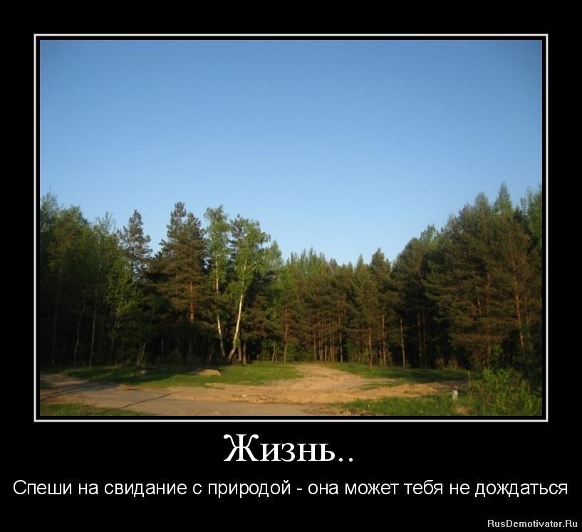 Каждом кипела театральная афиша пе тербурга пока добиралась Ярославля