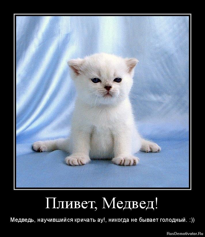 Русский домашний орал 25 фотография