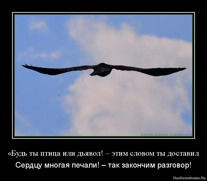 Русский кончил в нее 13 фотография
