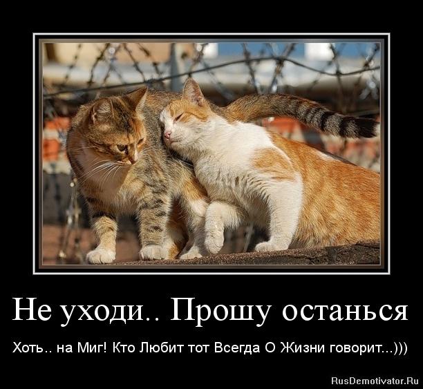 Не уходи.. Прошу останься - Хоть.. на Миг! Кто Любит тот Всегда О Жизни говорит...)))