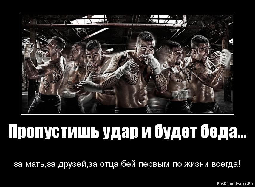 бей картинки: