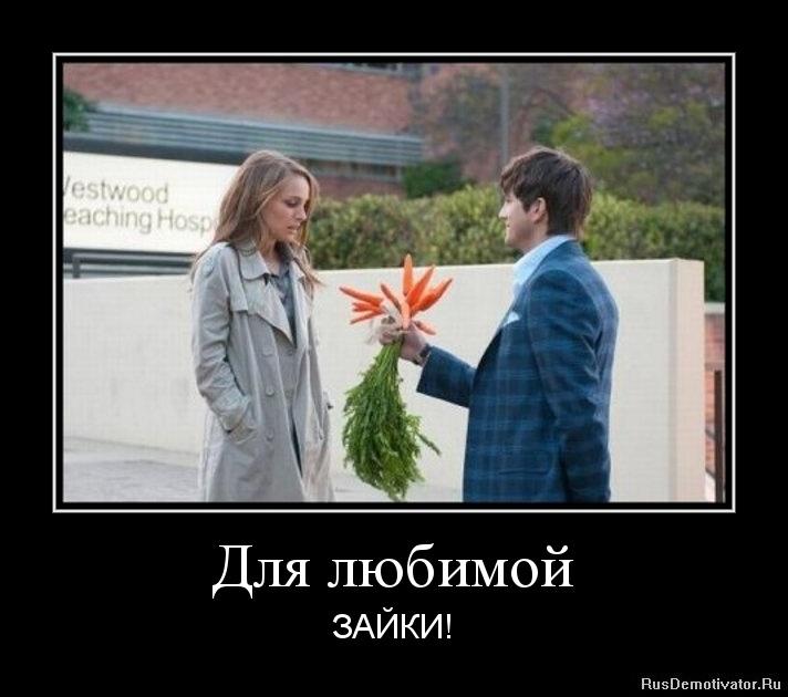 Для любимой - ЗАЙКИ!
